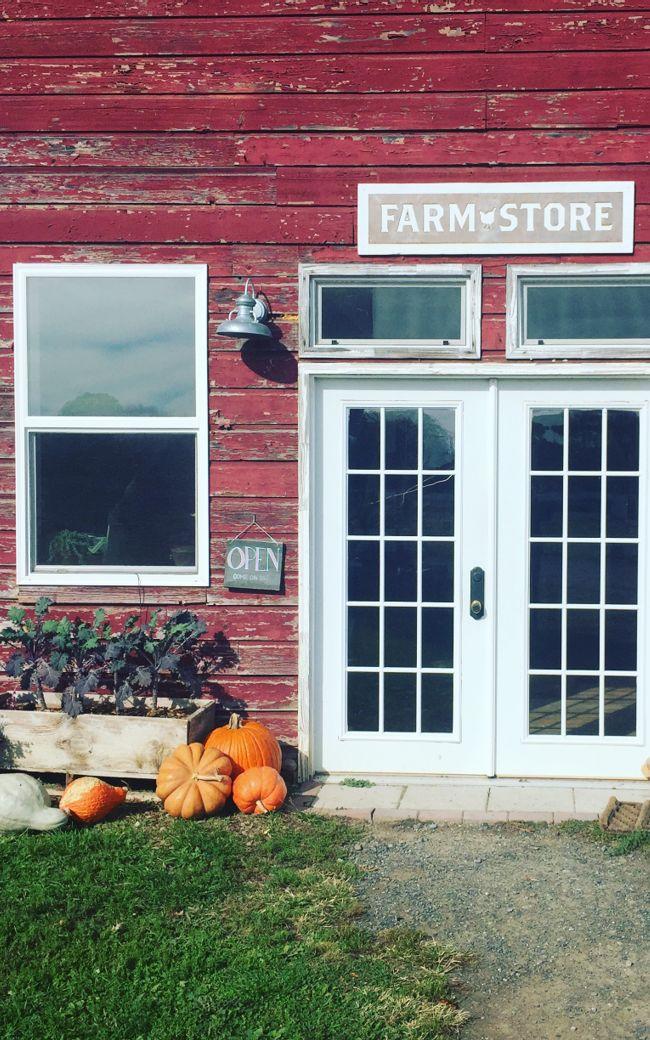 Sawkill Farm Store