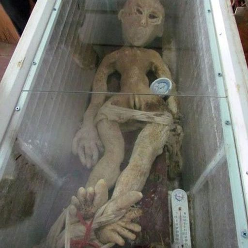 Episode 153: The Alien In The Freezer from The Unbelievable
