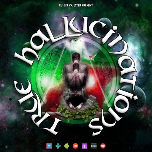 True Hallucinations 103 @ Dice Radio ft  Ru-Bix from Temple Of Boom