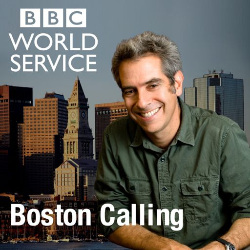 Cover art for podcast Boston Calling