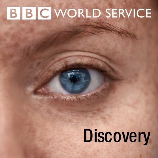 Cover art for podcast Discovery
