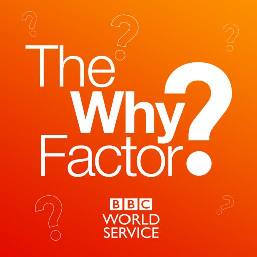 Cover art for podcast The Why Factor