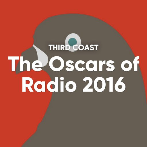 Cover art for podcast Winners from the most prestigious competition in audio storytelling