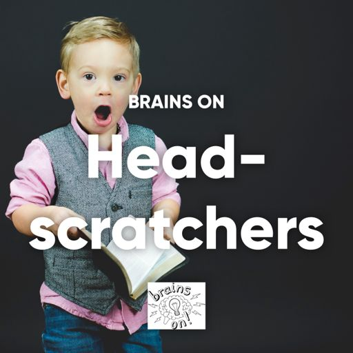 Cover art for podcast Brains On's Head-scratchers