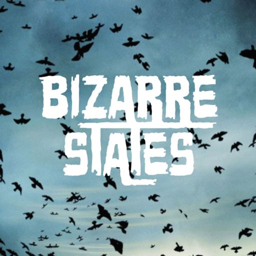 You're Not Broken from Bizarre States on RadioPublic