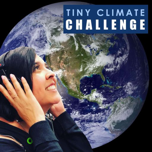 Cover art for podcast Tiny Climate Challenge