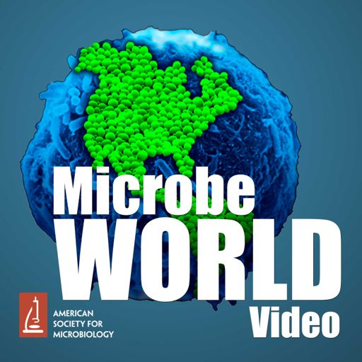 Cover art for podcast MicrobeWorld Video (audio only)