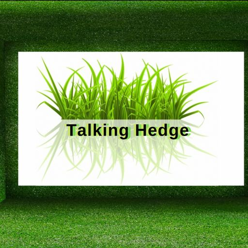 Cover art for podcast The Talking Hedge