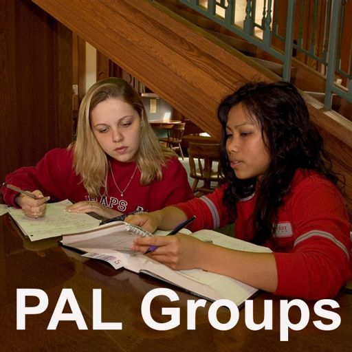 Cover art for podcast Peer Assisted Learning (PAL) Groups Podcast: College Group Tutoring and Study Review Groups