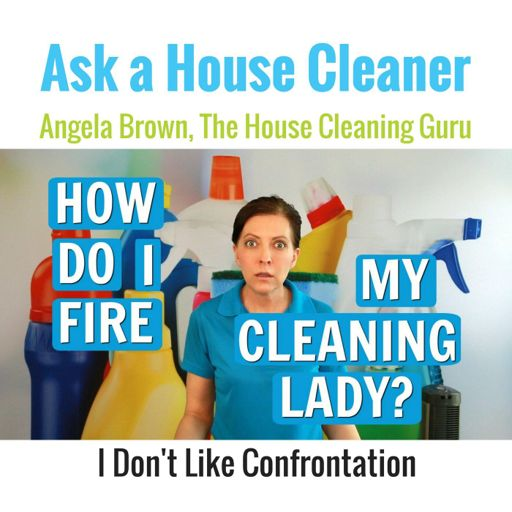 5 Success Traits Of Cleaning Employees From Ask A House Cleaner On Radiopublic