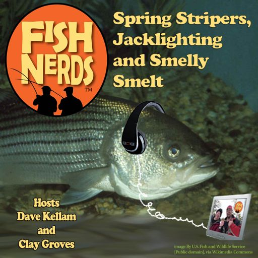 Fish Nerds - Spring Stripers, Jacklighting and Smelly Smelt from