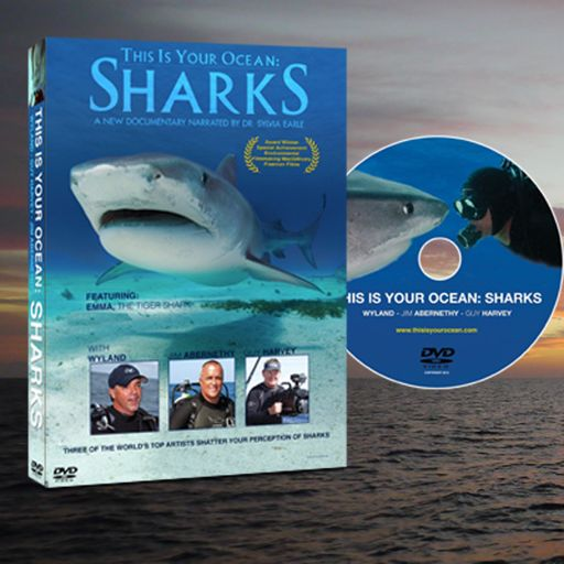 This is Your Ocean: Sharks on DVD from Shark Task Force on