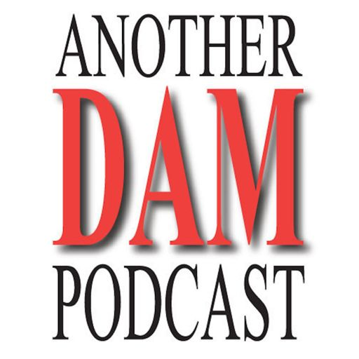 Cover art for podcast Another DAM Podcast