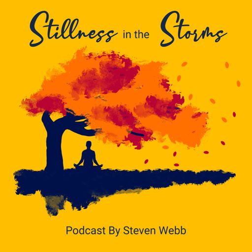 Cover art for podcast Stillness in the Storms