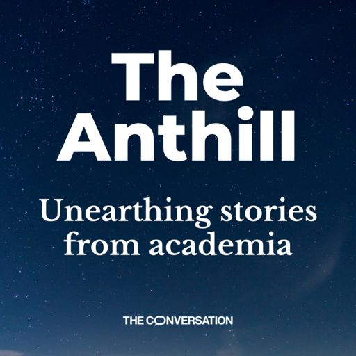 Cover art for podcast The Anthill