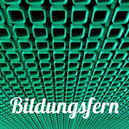 Cover art for podcast Bildungsfern