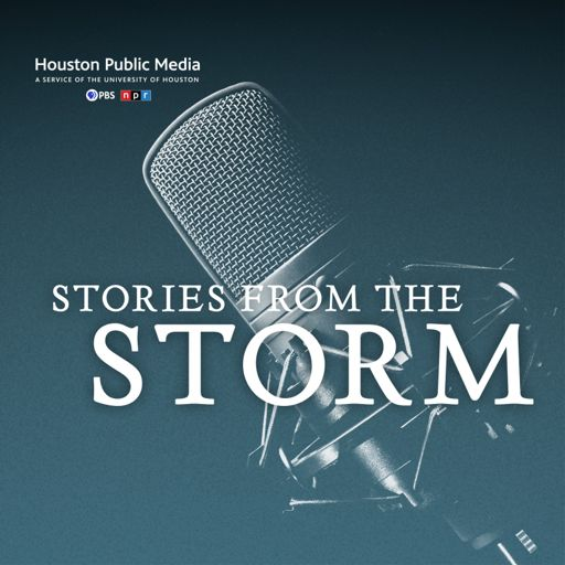 Cover art for podcast Stories from the Storm