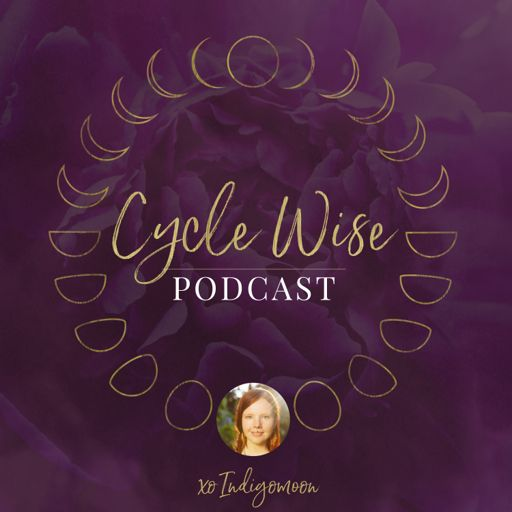 Cover art for podcast CYCLE WISE