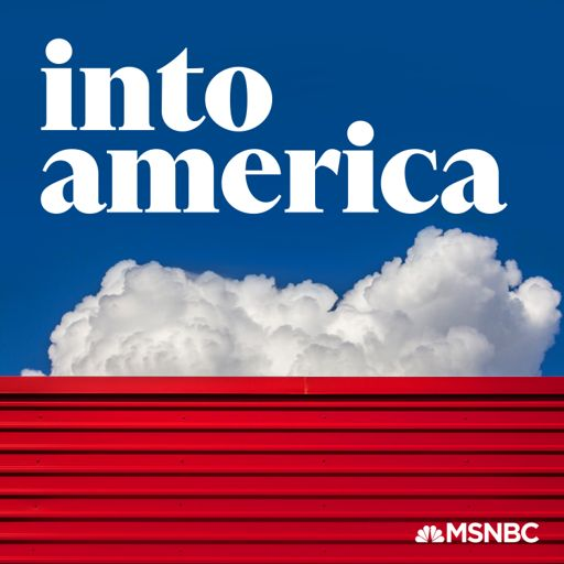 Cover art for podcast Into America