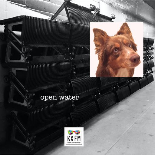 Cover art for podcast open water