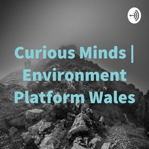 Cover art for podcast Curious Minds | Environment Platform Wales