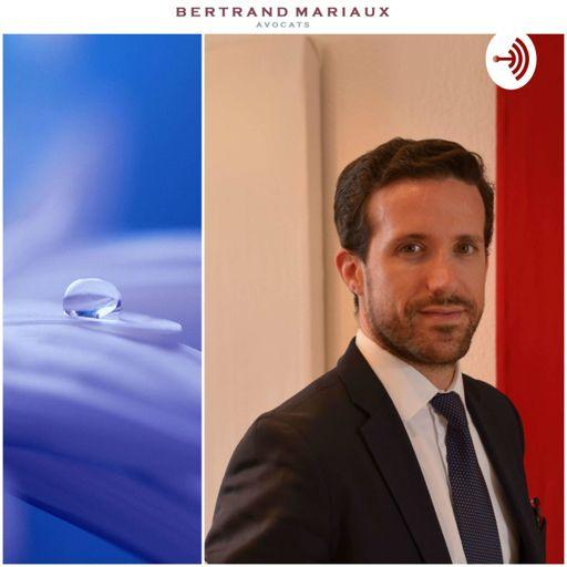 Cover art for podcast Le Podcast du droit et de l'impact   The Law & Impact Podcast