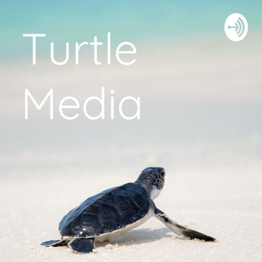 Cover art for podcast Turtle Media