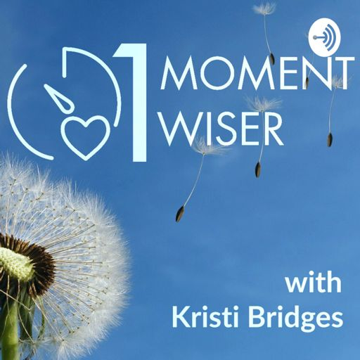 Cover art for podcast 1 Moment Wiser