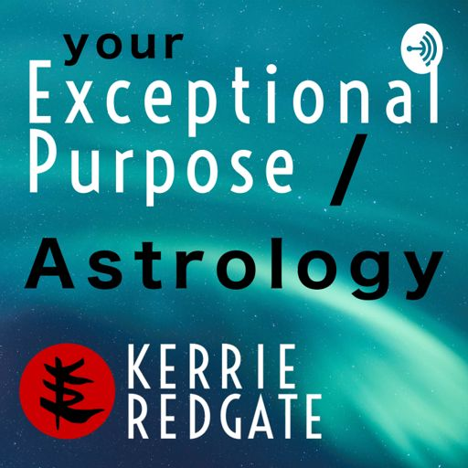Cover art for podcast Your Exceptional Purpose | Astrology