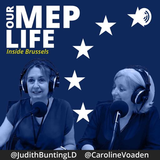 Cover art for podcast Our MEP Life