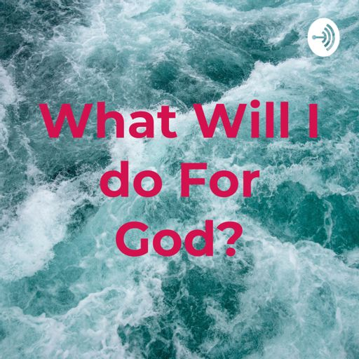 Cover art for podcast What Will I do For God?