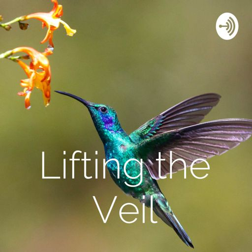 Cover art for podcast Lifting the Veil