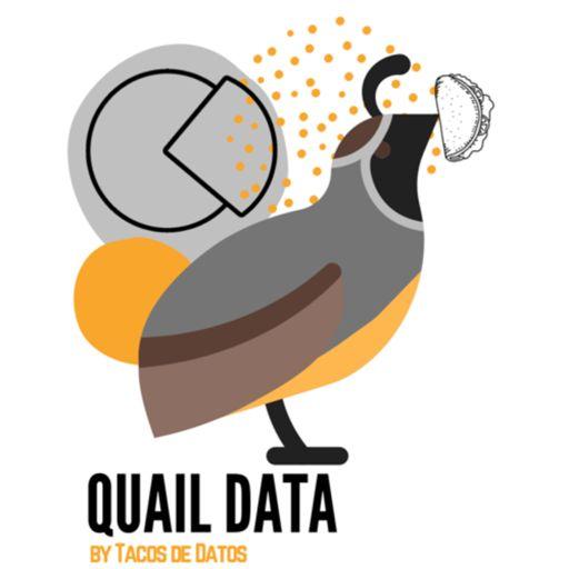 Cover art for podcast Quail data por tacos de datos 🤓🌮📊