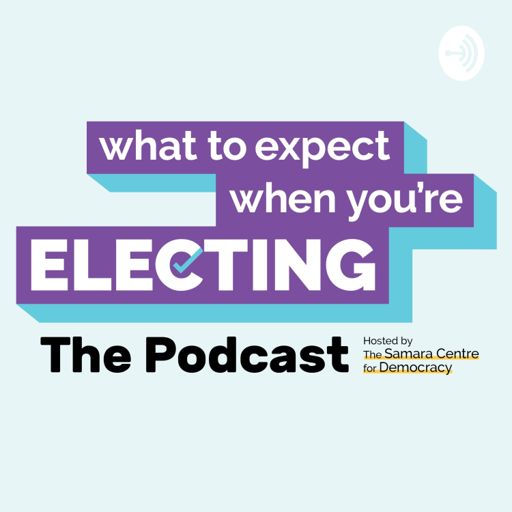 Cover art for podcast What to Expect When You're Electing