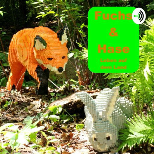 Cover art for podcast Fuchs & Hase