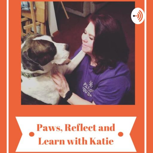Cover art for podcast Paws, Reflect and Learn with Katie
