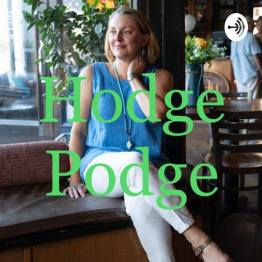 Cover art for podcast Hodge Podge: A Podcast About All Types of Things!