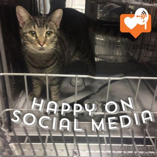 Cover art for podcast Happy on Social Media