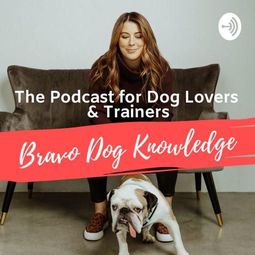 Cover art for podcast Bravo Dog Knowledge: Dog Training Podcast