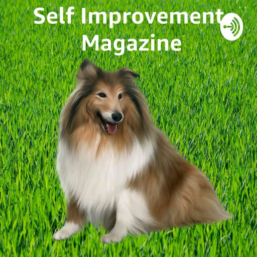 Cover art for podcast Self Improvement Magazine