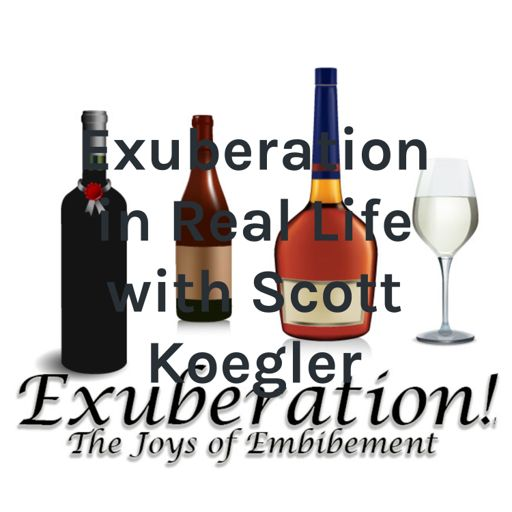 Cover art for podcast Exuberation in Real Life with Scott Koegler