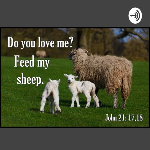Cover art for podcast Feed My Sheep Christian Podcast