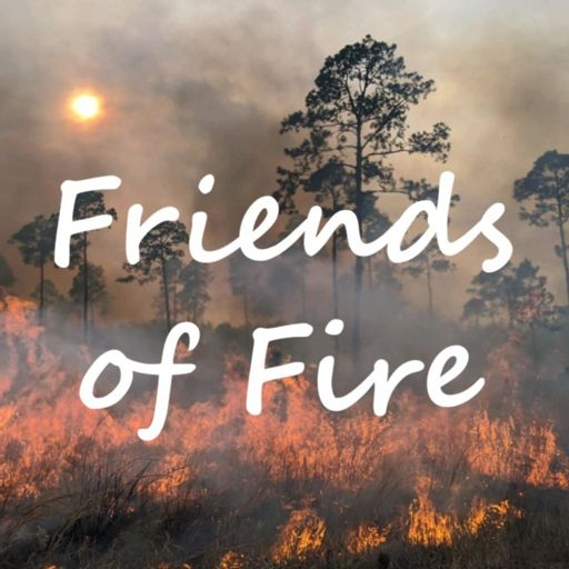 Cover art for podcast Friends of Fire
