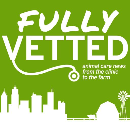 Cover art for podcast Fully Vetted