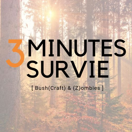 Cover art for podcast 3 minutes survie