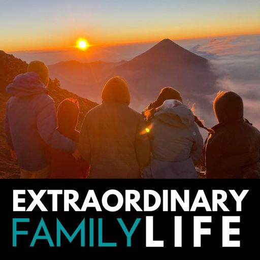 Cover art for podcast The EXTRAORDINARY Family Life Podcast