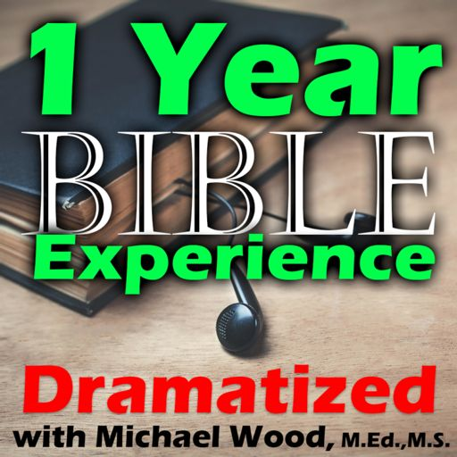 Cover art for podcast 1 Year Audio Bible Experience