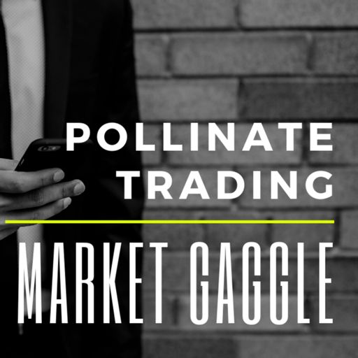 Cover art for podcast The Market Gaggle by Pollinate Trading