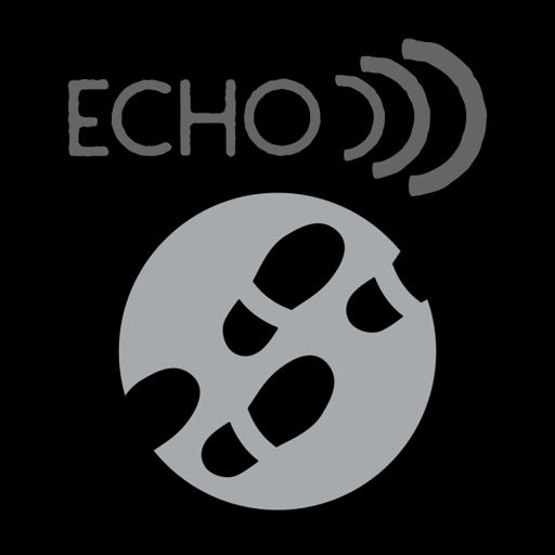 Cover art for podcast Echo