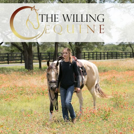 Cover art for podcast The Willing Equine